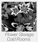 flower storage cold rooms